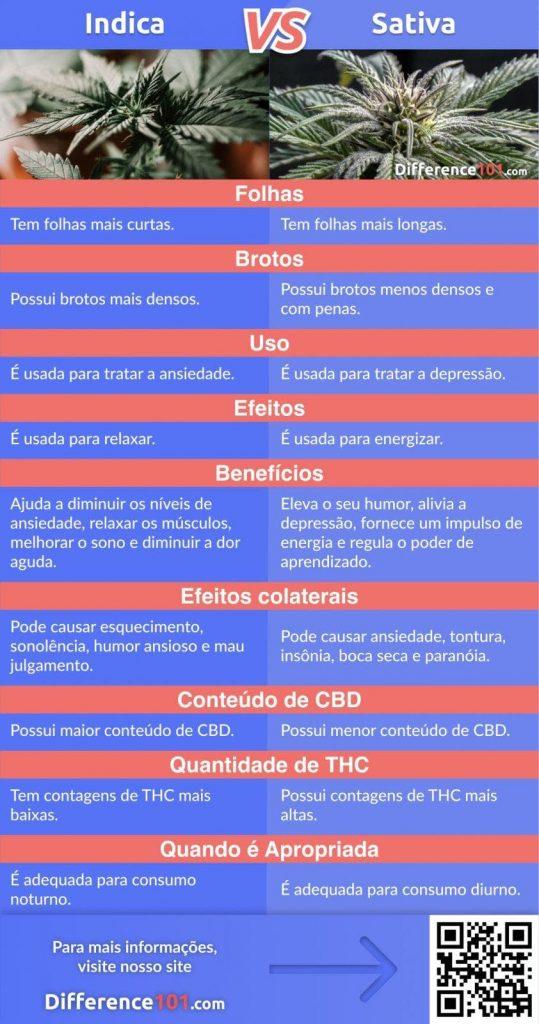 Qual é a Diferença Entre as Linhagens de Maconha Indica vs Sativa e Híbrida?