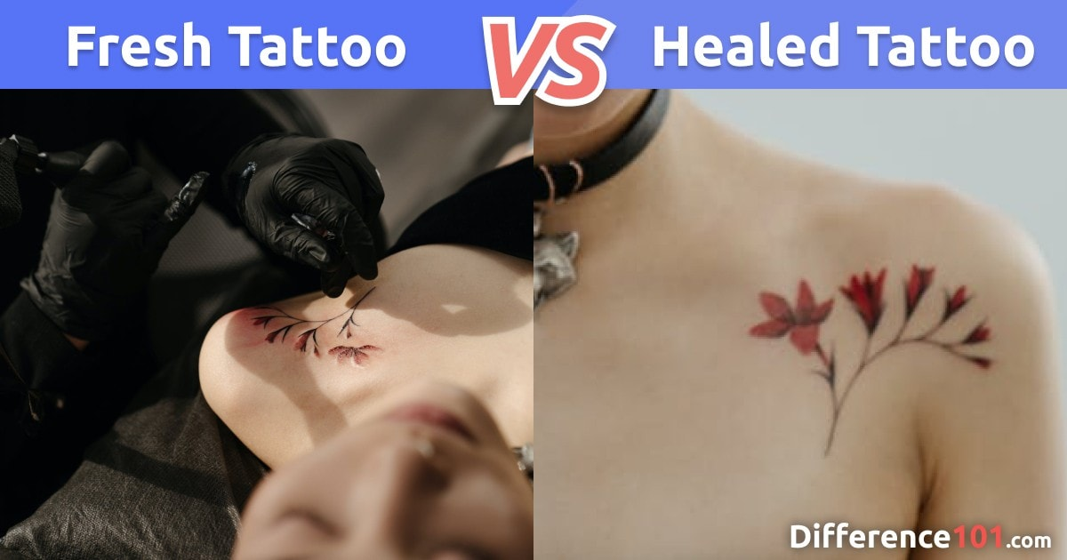 Fresh vs. Healed Tattoo: Differences, Similarities, Pros & Cons