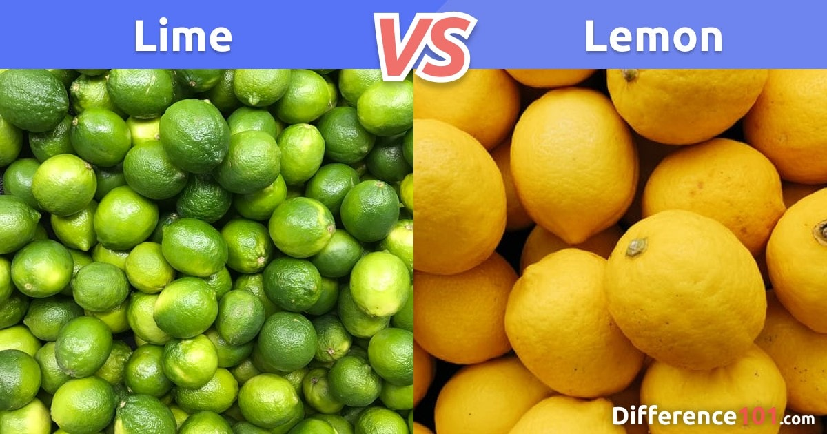 Lime vs. Lemon: Differences, Pros & Cons, Health
