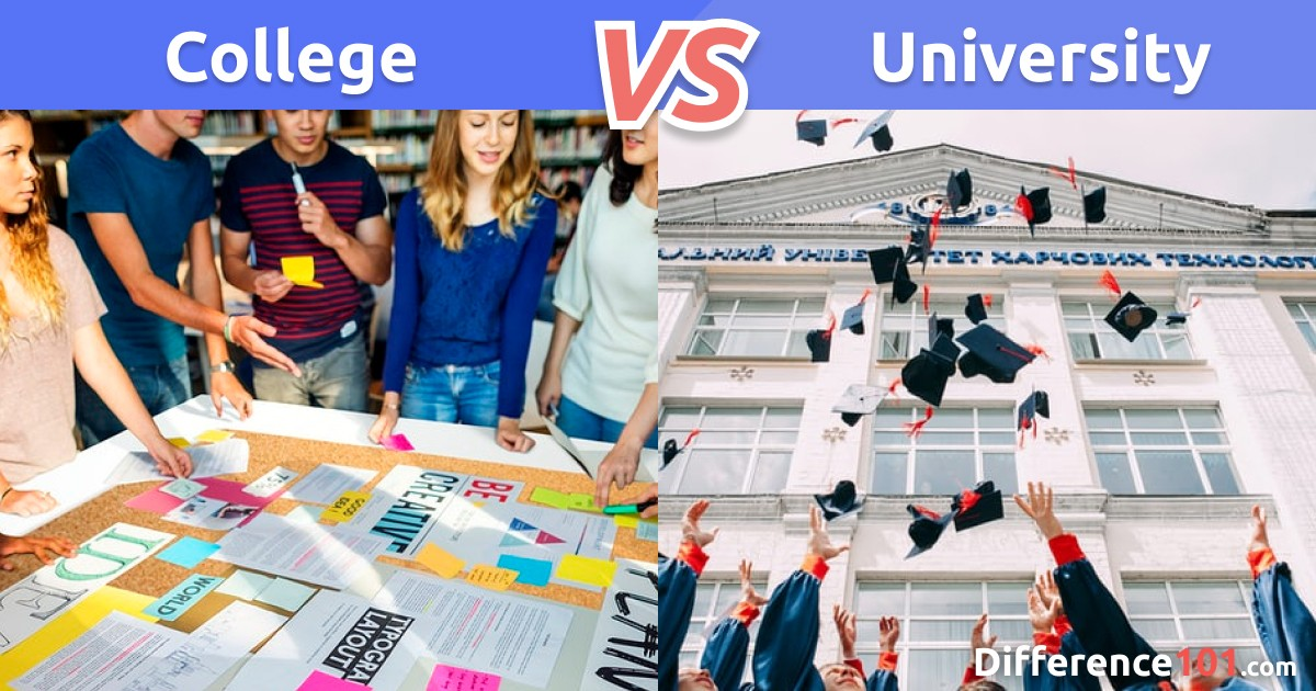 College vs. University: Differences, Pros & Cons, and which is better?