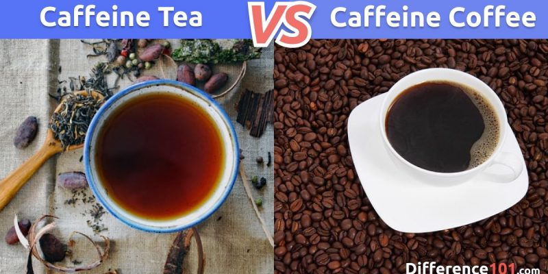 Caffeine in Tea vs. Coffee: What is the difference between Caffeine in Tea and Coffee?