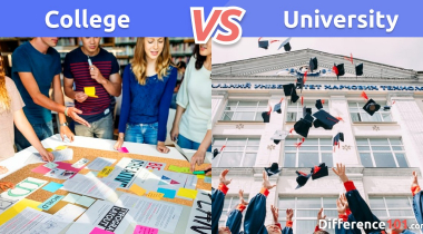College vs. University: What is the difference between College and University?