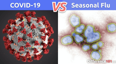 COVID-19 Coronavirus vs. Flu: What's the Difference Between Coronavirus and Flu?