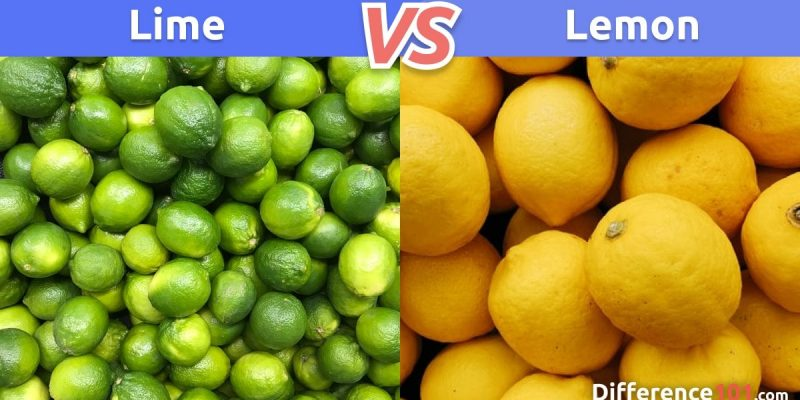 Lime vs. Lemon: What is the difference between Lime and Lemon?